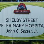 2017 Shelby Street